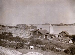 Västra Götaland, Kungälv, Bohuslän, Byggnadsverk-Bostadsbebyggelse-Bostadshus, Miljöer-Kust- och skärgårdsmiljö
